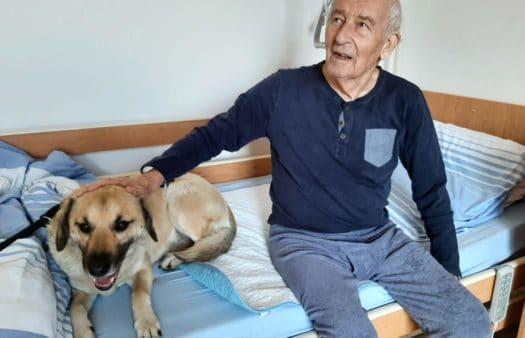 Návštěva psa Buddyho vSeniorCentru Havířov
